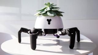 Роботът, който се грижи за цветята ни