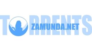 Zamunda, Arenabg и Chitanka се сринаха