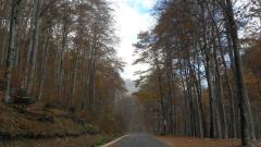 България вписва четири биосферни резервата по изискванията на ЮНЕСКО