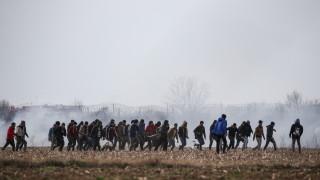 10-годишен спад на молбите за убежище в ЕС