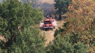 Възрастен мъж едва не изгоря в горски пожар
