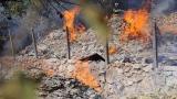 Пожар затрудни шофьорите край варненското село Каменар