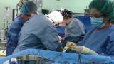 Оставки и в агенцията по трансплантации?