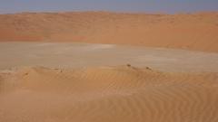 Откриха телата на 34 мигранти в пустинята Сахара