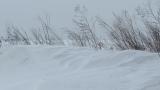 Близо 40 населени места в Северна България остават без ток