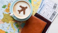 Защо да не публикуваме бордната си карта в социалните мрежи