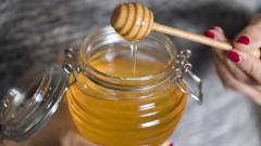 Медът като най-доброто лекарство