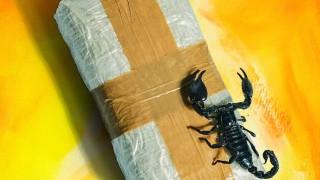 Кокаиновата война в Мексико ще продължи