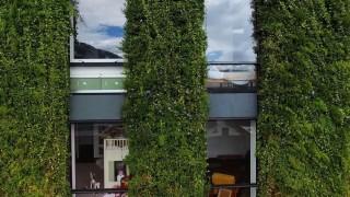 Най-голямата вертикална градина в света има 85 000 растения