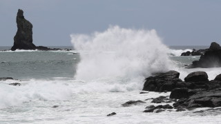 """Евакуират над 800 хил. души в Япония заради тайфуна """"Хайшен"""""""