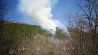 Горски пожар възникна над Благоевград