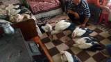 МОСВ дари бездимна печка на спасителя на щъркелите от село Зарица
