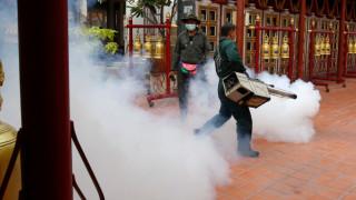 Сингапур е пред най-лошото си огнище на вируса денга в историята
