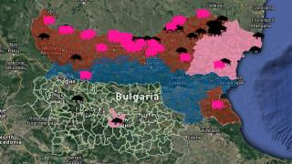Многото комари май били основната причина за африканската чума край Дунав