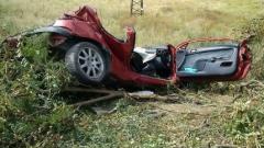 Двама младежи загинаха на място при удар в крайпътно дърво