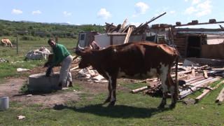 Събарят незаконни ромски постройки в Казанлък