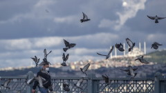 Турция с 300 800 случая на коронавирус