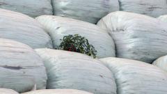 Още 100 хил. тона софийски бали извозват в Пловдив