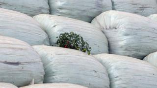 Първият софийски боклук достигна Дунав