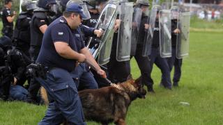 Бум на пенсионирани полицаи и военни