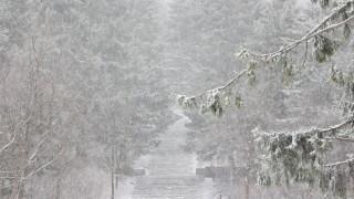 Обилен снеговалеж затвори основни пътища в Гърция
