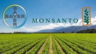 Европейският съюз одобри мегасделката между Bayer и Monsanto