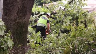 Буря причини смъртта на мъж и рани жена в Долни Богров