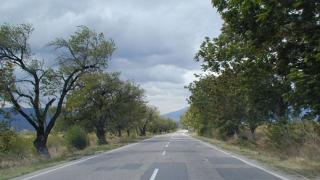 Шофьор без книжка загина на пътя Балчик-Добрич