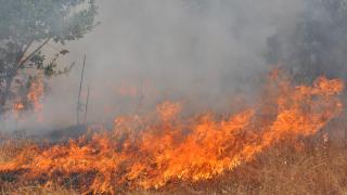 Горещината и силният вятър затрудняват гасенето на пожара в Сакар