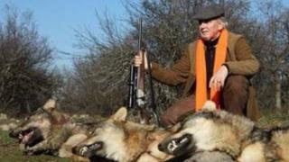 Скандална е демонстрацията на животински трупове