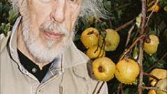 Почина основателят на попарта Ричард Хамилтън