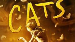 """""""Котките"""", които твърде много говорят"""