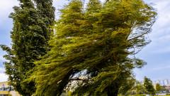 Захладнява, 19 области са с жълт код за ветрове и бури