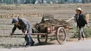 Голямото китайско преброяване започна