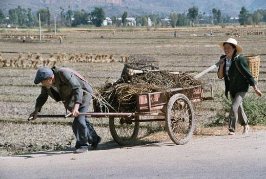 Очакват 24 млн. китайци да търсят работа през 2007 г.