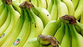 """ЕС слага край на """"банановите войни"""" с Латинска Америка"""
