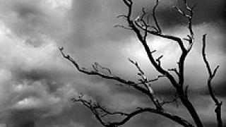 Предупреждават за гръмотевици и бури