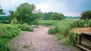 Бедствено положение в община Шумен заради сушата