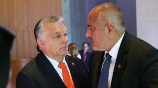 Унгарската дилема на Борисов