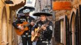 Codigo, Herradura, Don Ramon и още премиум текили Extra Añejo от Мексико
