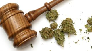 Калифорния легализира марихуаната