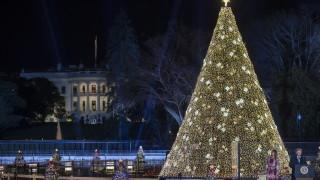 Тръмп и Мелания запалиха коледната елха