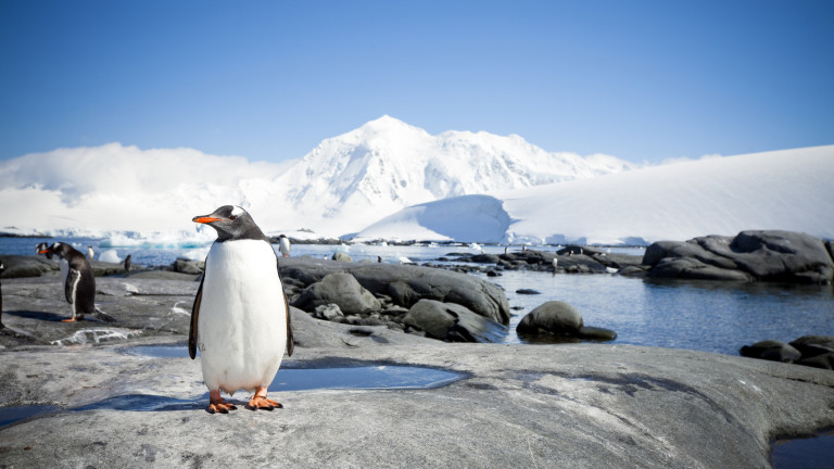 Януари 2020 г. - най-топлият в историята на Земята