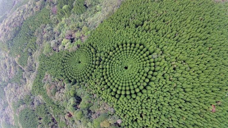 Поредица въздушни снимки предизвикаха изумление и известна паника в префектура