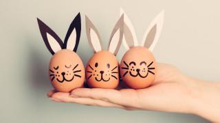 Откъде идва традицията на великденския заек