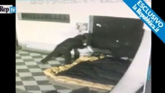Убиецът на бездомника в Палермо призна вината си