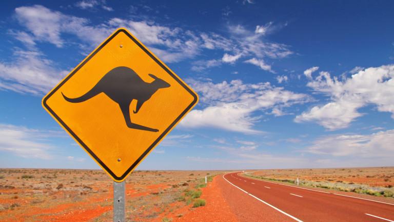 Австралия е широко известна със своите ужасни истории за ухапвания