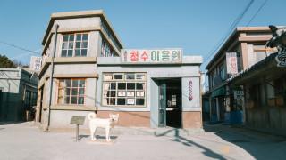 Сеул затваря всички кланици за кучешко месо