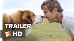"""Филмът """"Кучешки живот"""" разказва необикновена история"""