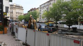 """Сдружения предупреждават, че дърветата по """"Граф Игнатиев"""" се съсипват"""
